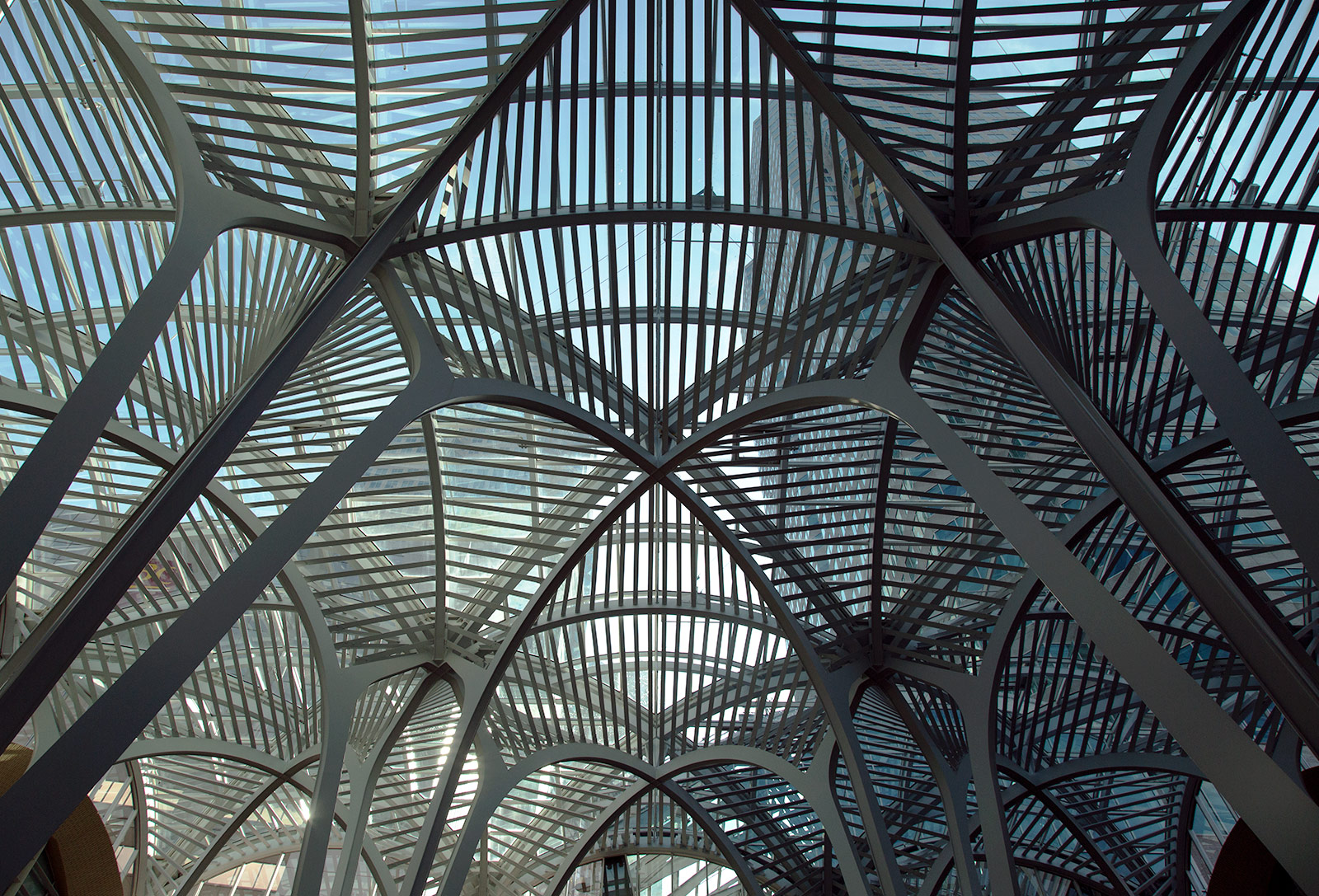 20140708. Looking up at the intricate roof of Sam Pollock Square (Architect Santiago Calatrava, c.1992) in Brookfield Place, Toronto.