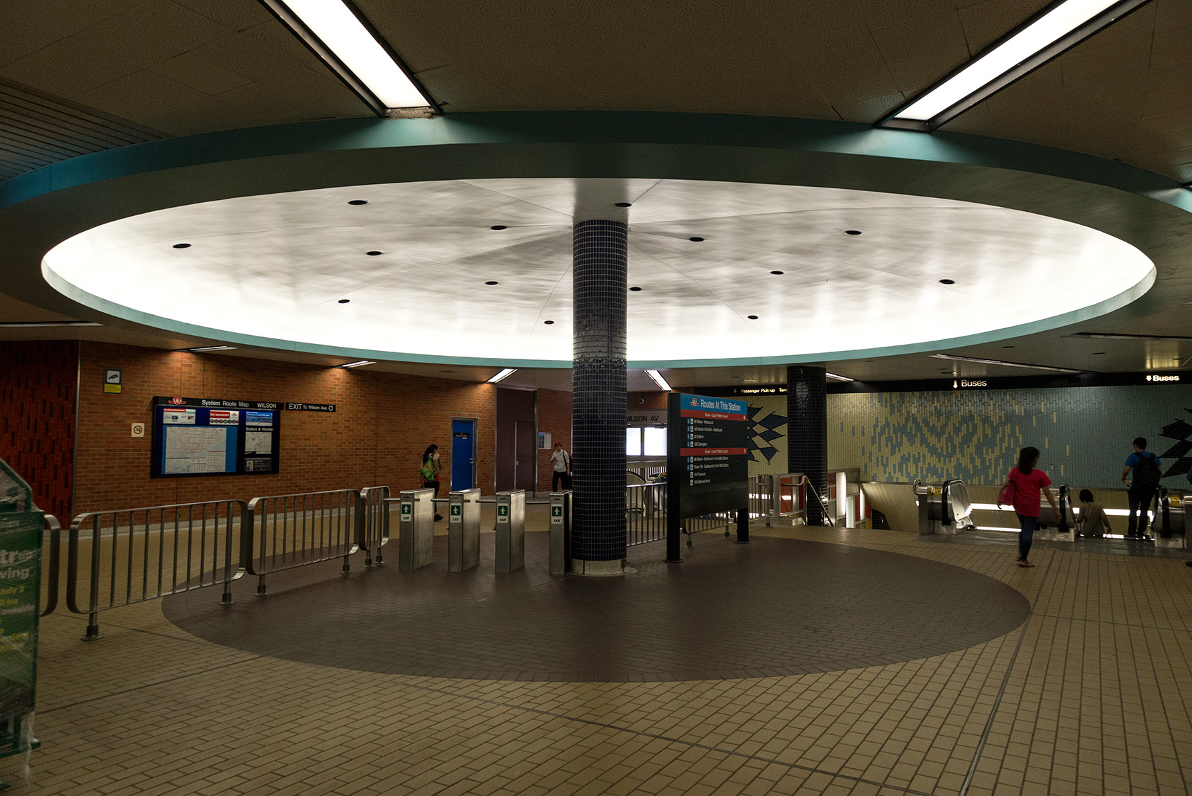 20160612. TTC's Wilson Station mushroom.
